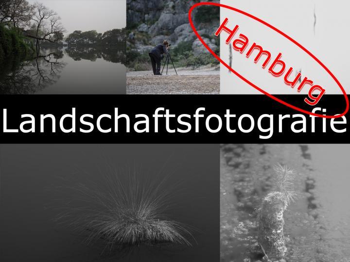 landschaft-hamburg.jpg