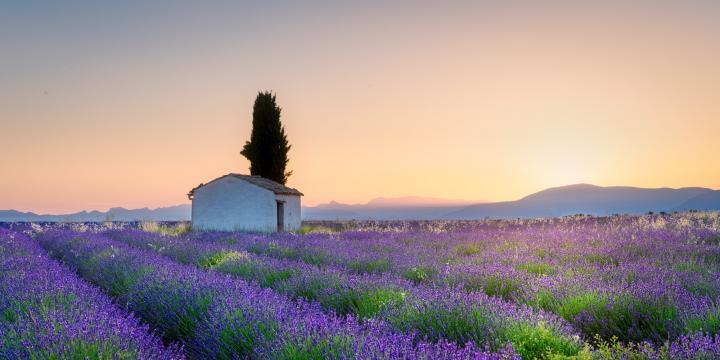provence-1-2.jpg
